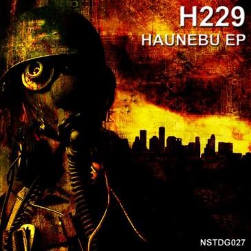 Haunebu-h229